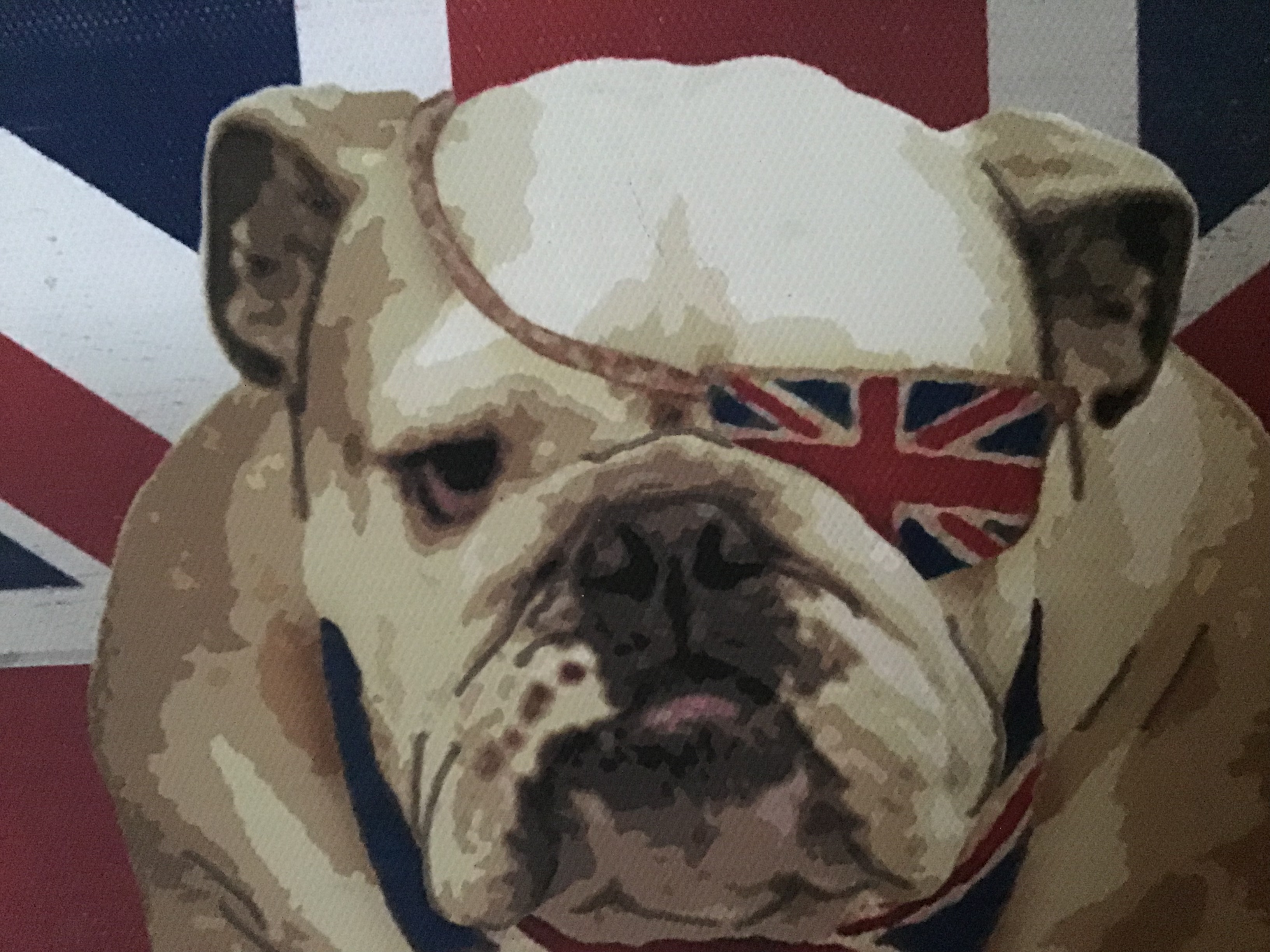 Heads up for more Bulldog memorabilia